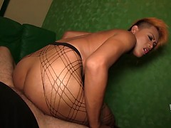Tao shows off her big dangling cock and barebacked in fishnet pantyhose