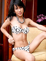 Cute lady shows off hot body - Asian ladyboys porn at Thai LB Sex