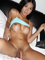 Blue thai angel bareback - Asian ladyboys porn at Thai LB Sex