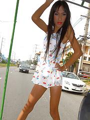 Baht Bus Cock Flash - Asian ladyboys porn at Thai LB Sex