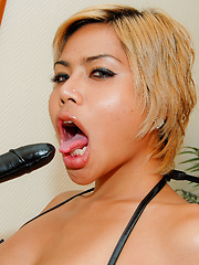 Ladyboy Bebe gets fucked by ass toys - Asian ladyboys porn at Thai LB Sex