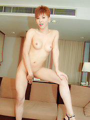 Hung dude pummels spunky ladyboys hole - Asian ladyboys porn at Thai LB Sex