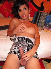 Penthouse Hotel ST - Asian ladyboys porn at Thai LB Sex