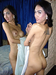 Hot Barebacking - Asian ladyboys porn at Thai LB Sex