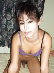 Shower Jerkoff - Asian ladyboys porn at Thai LB Sex
