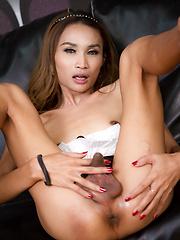 Leather Ladyboy Sofa - Asian ladyboys porn at Thai LB Sex