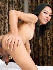 Another new face a Strigfellows, Soi Yamato - Asian ladyboys porn at Thai LB Sex