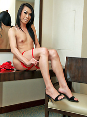 Well hung ladyboy jerks off in lingerie - Asian ladyboys porn at Thai LB Sex