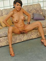 MILF ladyboy caught jerking her hot cock - Asian ladyboys porn at Thai LB Sex