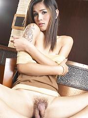 Kitchen Cock - Asian ladyboys porn at Thai LB Sex