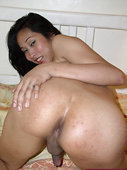 Shy Asian shemale offering her tight brown orifice - Asian ladyboys porn at Thai LB Sex