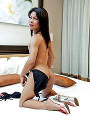 Young, hung ladyboy Jooy gets rock hard - Asian ladyboys porn at Thai LB Sex