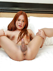 Hot new ladyboy jerk off and jism - Asian ladyboys porn at Thai LB Sex