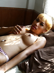 Exotic TS pleasing herself on bed - Asian ladyboys porn at Thai LB Sex