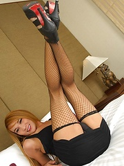 Ladyboy Parkky in Sexy Stockings - Asian ladyboys porn at Thai LB Sex