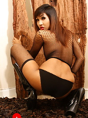 Seductive Fish poses & spreads - Asian ladyboys porn at Thai LB Sex