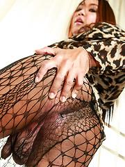 Eye - Asian ladyboys porn at Thai LB Sex