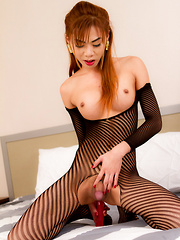 Tight Striped Bodysuit - Asian ladyboys porn at Thai LB Sex