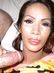 No Panty Bareback Facial - Asian ladyboys porn at Thai LB Sex