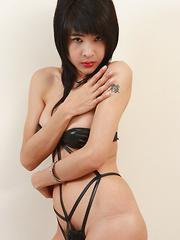 Barely There Bikini - Asian ladyboys porn at Thai LB Sex
