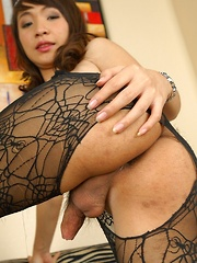 Tgirl Bell in Fishnet Catsuit - Asian ladyboys porn at Thai LB Sex