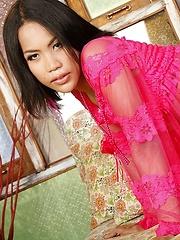Ladyboy TT Ass Spread Wide - Asian ladyboys porn at Thai LB Sex