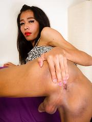 Sexy Horny Toon! - Asian ladyboys porn at Thai LB Sex