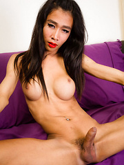 Sexy Horny Toon! - Asian ladyboys porn at Thai LB Sex