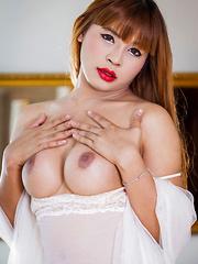 Leo's Long Legs - Asian ladyboys porn at Thai LB Sex