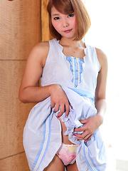 Yummy Yume IV - Asian ladyboys porn at Thai LB Sex