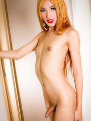 Meet Stunning Grooby Newbie Fossy - Asian ladyboys porn at Thai LB Sex