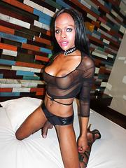Gushing Cumshot From a Big Dark Cock - Asian ladyboys porn at Thai LB Sex