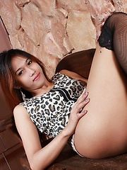 A Barely Legal shemale from Thailand getting naked and erect